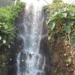 Indoor water falls