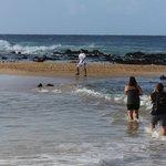 Poipu Brenecke Beach