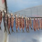 smoked/dried omul fish