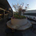 Photo of Stratus Rooftop Lounge