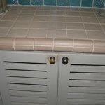 filth on bathroom cabnet doors