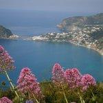 Blick vom Monte Panza auf S. Angelo
