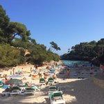 Beach aug 2014 - plenty of shade