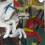 Some of the delightful majestic steeds on the Guelph carousel