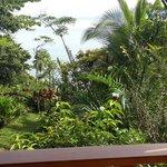 Balcon Casa Horizontes Drake Bay