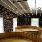 fermentation tanks full and, well, fermenting
