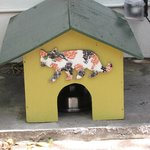 One of the many cat houses on the Hemmingway property
