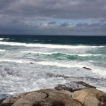 From rocks on the Bondi coastal walk, you're up close to the ocean and its waves, but be careful