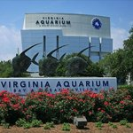 Hotel is a short drive to the Virginia Aquarium