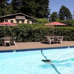 Fern Grove Cottages, a bed and breakfast, at the Russian River