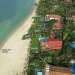 Coconut Laguna Beach view