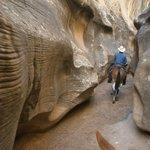 Ride through a slot canyon on Willis Creek