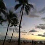 ヤシの木を入れると一層ハワイらしく