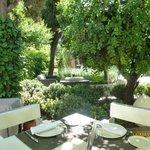 Beautiful calm courtyard at the Hotel de los Patos, Granada.l