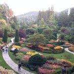The amazing sunken gardens