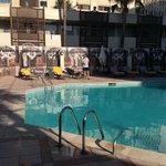 piscine a 8 h du matin