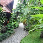 Beautiful gardens/pathway
