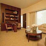 Park Hyatt Zurich - Park Suite Living Room