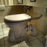 craziest toilet ever