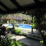 la piscine vue de la chambre
