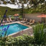 Pines Pool V
