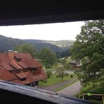 View of Schwarzwald from our balcony in our room