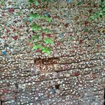 Chewing gum-covered wall in courtyard