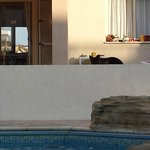 Dog staying next to the pool