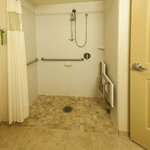 Handicap Accessible Roll In Shower
