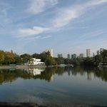 Park Chapultepec - jezioro