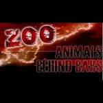 Zoo Bar Malia Foto