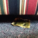 Found condom under the couch when looking for a flip flop.