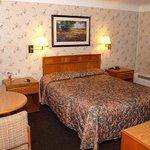 MIBay Motel Bay City Bed