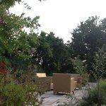 the beautiful back garden
