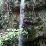 Pretty waterfall at the aquarium