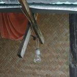 Photo of Tree Tops Jungle Safaris - Raft Houses