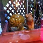 près de la fenêtre, un Escargot !
