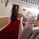 Fresh paint & new carpet