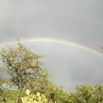 Rainbow in the Camp Ground