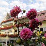 Hotelgarten mit Blumen