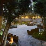 Garden area / Hot Tub