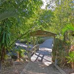 wetland bridge