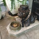 Dog and water bowl at hotel entrance