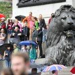 Encontre o leão na multidão.