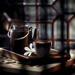 An interior shot of a tea set seen through a jaali