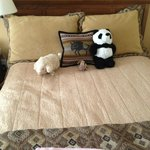 The maid displayed my kids' animals nicely on the bed (before they were just strewn on a chair)