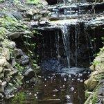 Waterfall view at Ijams