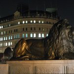 Lions guard Admiral Nelson's statue