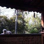 La Casita´s porch