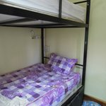 bunk bed just for sleep